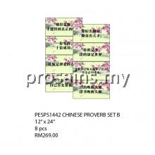 PESPS1442 (Prosains) - CHINESE PROVERB SET B